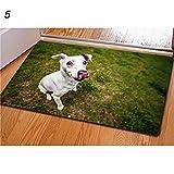 Feli546Bruce Felpudo, diseño de Animales, 3D, Antideslizante, para la Puerta de la Cocina, para el salón o el Dormitorio, 5#, Talla única