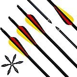 Narchery [12 Stück] Pfeile für Bogenschießen, 31 Zoll Carbonpfeile Bogenpfeile mit Kunststoffbefiederung, Jagdpfeile für Bogen, Recurvebogen, Langbogen und Traditionellen Bogen