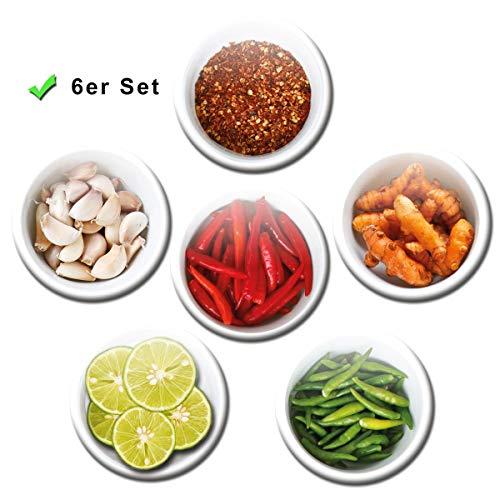Kühlschrankmagnete Gewürze 6er Geschenk Set Magnete Thailand Küche für Magnettafel stark groß Ø 50 mm Bunt (Blätter Gewürz-farbige)
