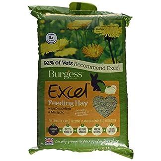 Burgess Excel Barn Dried Forage Rabbit Food 1 kg (Pack of 3) Burgess Excel Barn Dried Forage Rabbit Food 1 kg (Pack of 3) 51P5ggRv2xL
