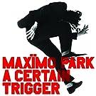 A Certain Trigger (Lp+Mp3/Remastered) [Vinyl LP]