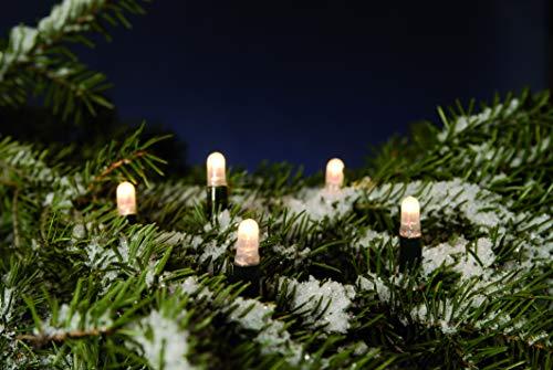 Hellum 555042 LED Verlängerungsset 80 LEDs warmweiß / 8,1 m/für LED Lichterkette 555011 + 555035 / erweiterbar bis 1000 LEDs/innen & außen/grün