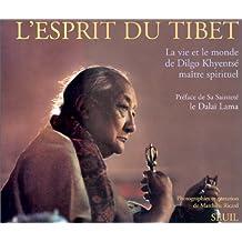L'esprit du Tibet : La vie et le monde de Dilgo Khyentsé, maître spirituel...