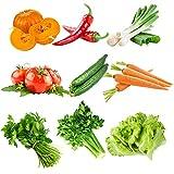 DaDago 10 Tipi Semi di Verdure Miste Verde Reale Non-OGM Semi vegetali organici piantare commestibili