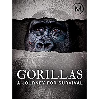 Gorillas: A Journey For Survival