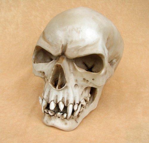 ORC Markus Mayer cranio teschio Gothic