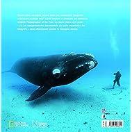 Incredibile-mondo-sommerso-Insolite-storie-del-mondo-animale