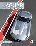 Jaguar: Faszination im Zeichen der Katze