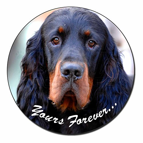 gordon-setter-yours-forever-fridge-magnet-stocking-filler-christmas-gift