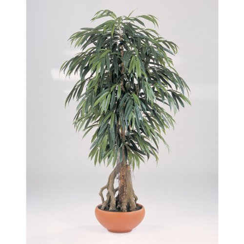 Set 2 x Künstlicher Longifolia-Baum de luxe im Topf, 170 cm – Dekobaum / Longifolia Pflanze – artplants