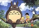 F-HO4FFD My Neighbor Totoro 83cm x 60cm,33inch x 24inch Silk Print Poster