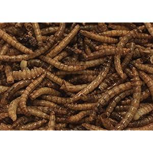 250 ml Mehlwürmer - Proteinsnack - schonend getrocknet