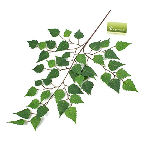 artplants Set 15 x Künstlicher Birkenzweig, 48 Blätter, 70 cm – 15 Stück – Dekozweige/Künstliche Blätter