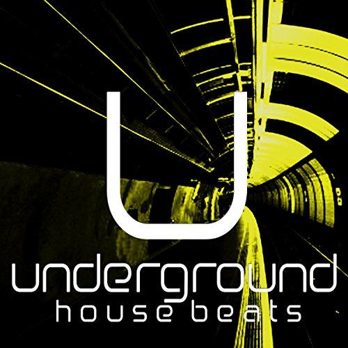 The Deep Door (House Rhythms Mix)