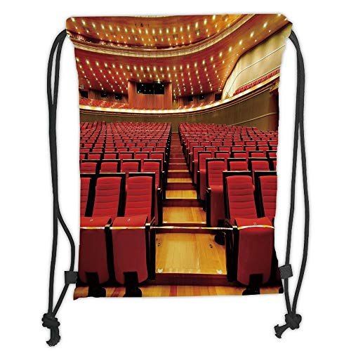 Trsdshorts Drawstring Backpacks Bags,Musical Theatre Home Decor,China National Grand Theater Hall Chairs Auditorium Image,Red Light Brown Soft Satin,5 Liter Capacity,Adjustable String Closure