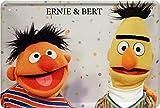 Ernie und Bert Funny Witziges Blechschild 20 x 30 Retro Blech 1044