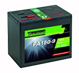 Alkalische Batterie/Brennstoffzelle 150 A - 9 V