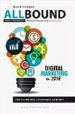 AllBound & Search Marketing: 10 ans de recherche chez Seolius Europe (French Edition)