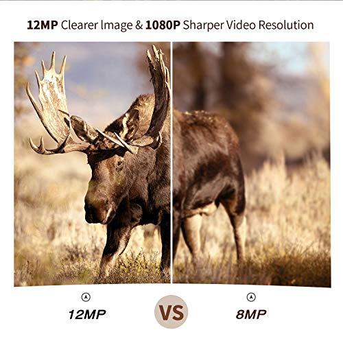 Campark Mini Wildlife Camera - Best Security Camera