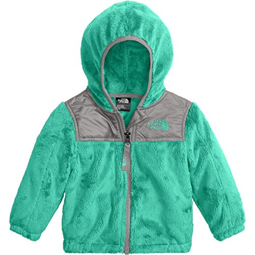 3m The North Face (The North Face Infant Oso Hoodie - Bermuda Green - 3M (Past Season))