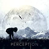 Songtexte von Breakdown of Sanity - Perception