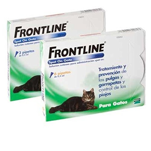 frontline-spot-on-para-gatos-6-pipetas