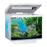 Juwel Nano Aquarium Vio weiß
