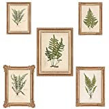 Wallies 13438 Fern Prints Wallpaper Mural
