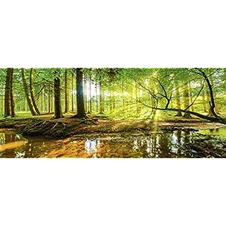 Artland Qualitätsbilder I Glasbilder Deko Bilder Günter Albers Wald mit Bach Landschaften Wald Fotografie Braun 50 x 125 x 1,1 cm C0ZA