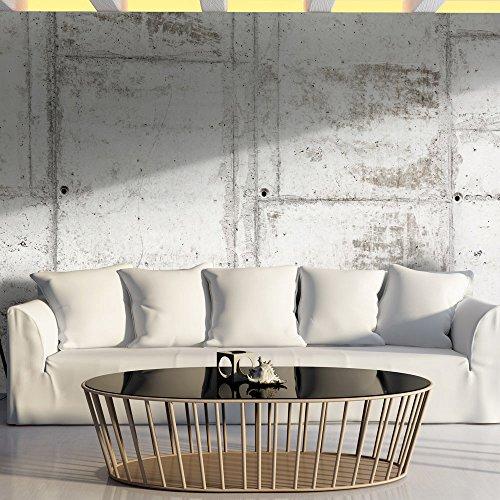 papier-peint-intisse-500x280-cm-grand-format-xxl-top-vente-papier-peint-tableaux-muraux-deco-beton-t