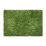 Yontree Alfombra para Puerta Felpudo Antideslizante 40 * 60cm Verde