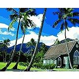 YKCKSD Puzzle 1000 Pezzi Hawaii Chiese Kauai Fai da Te per La Decorazione Domestica