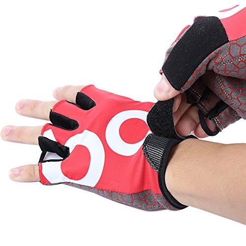 Shuzhen,Gepaart Unisex Anti-Rutsch-Gym Sport Gewichtheben Training Radfahren Halbe Fingerhandschuhe für Outdoor-Sport(Color:ROT,Size:XL)