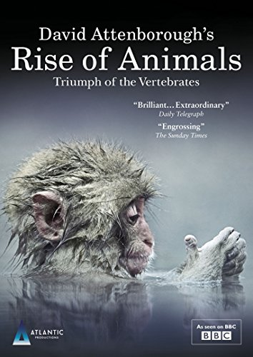David Attenborough's Rise of Animals: Triumph of the Vertebrates [DVD]