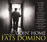 Goin'home [New Recordings] [Import allemand]