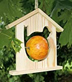Beleduc–40709–Set Kreative Freizeitbeschäftigungen,–Bird Stop