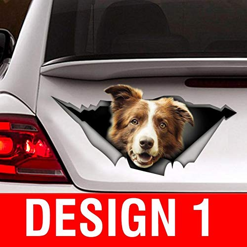 Sticker/Brown and White Border Collie car Sticker Vinyl Sticker for Cars, Windows, Walls, Fridge, Toilet and More - 15 Inch -