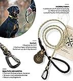Jack & Russell Premium Hundeleine Kosmo aus Profi-Kletterseil und Twistlock Karabiner Leine Soft-Grip Handschlaufe (Gelb-Grau/Reflektierend)