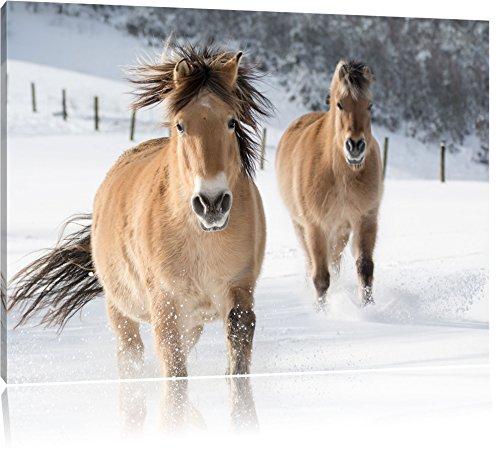 Cavallo nella neve pittura su tela, Immagini XXL completamente incorniciate con grandi cornici di cuneo, foto muro Stampa artistica con cornice, più economico di pittura o foto, senza manifesti o poster, Leinwand Format:120x80