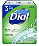 Dial Mountain Fresh Antibacterial Deodor...