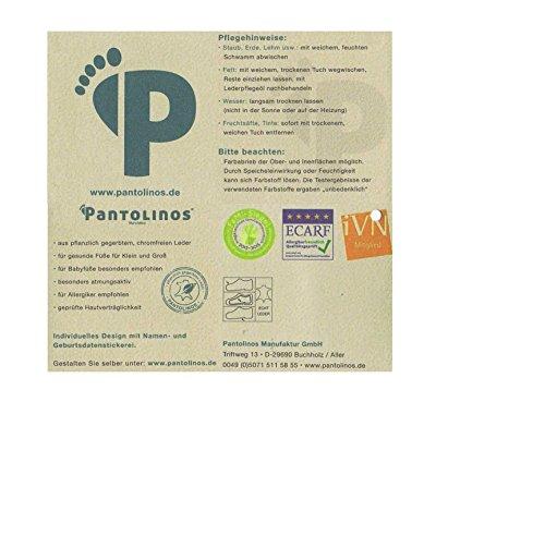 Pantolinos Süßer Frosch-Kinderschuh / Krabbelschuh / Lauflernschuh in grau mit grün Grau