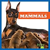 In Mammals, early readers learn about the defining characteristics of this animal group. Vibrant, full-color photos and carefully leveled text will engage early readers as they discover what features set these animals apart.