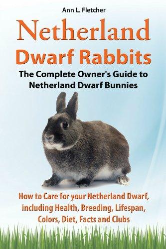 Netherland Dwarf Rabbits (English Edition)