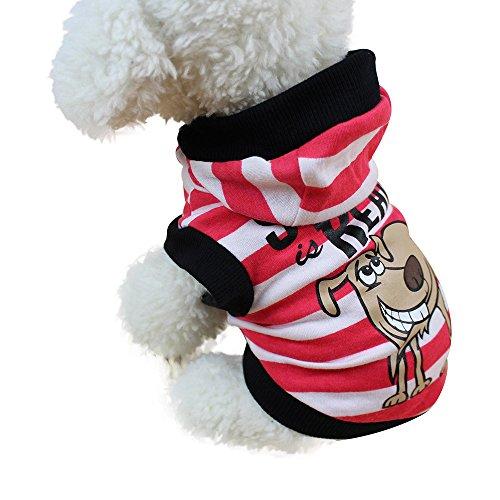 routinfly Mode niedliche Kleine Haustier Hundebekleidung ,Hund Katze Pullover Welpen Mantel Jacke Kleidung HundeKleidung Hoodies Hundejacke Hündchen Pullover Mantel Haustier Welpen T-Shirt -
