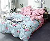 Linen Studio Beautiful Glace Cotton AC Comforter King Size Bed Comforter, Double Bed