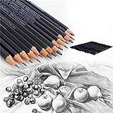Gaddrt 14PCS Beautiful 6h-12b professionale per pittura schizzo a matita arte matite