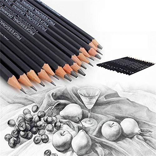 Pencils Gaddrt 14PC Malerei Werkzeug 6H-12B Professionelle Skizze Kunst Zeichnung Bleistift Skizzieren Bleistift