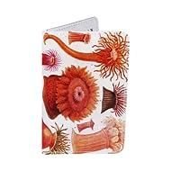 Porte-cartes Fleurs de l'Océan, pour Cartes de Visite et Cartes Bancaires