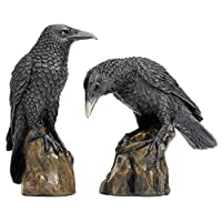 Design Toscano Mystic Night Raven Gothic Statues, 15 cm, Set of Two, Polyresin, Full Colour
