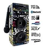 Biwond JoyBox Karaoké Bluetooth